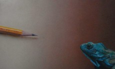 Pencil meets  lizard